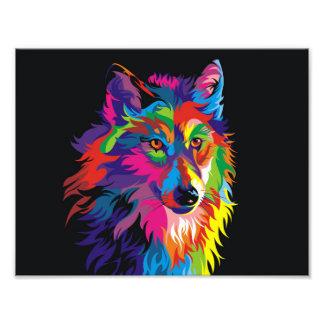 Renard coloré photo sur toile
