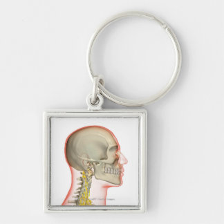 Rendering of the nerves of the neck Silver-Colored square keychain