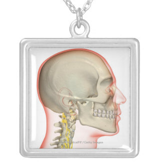 Rendering of the nerves of the neck silver plated necklace
