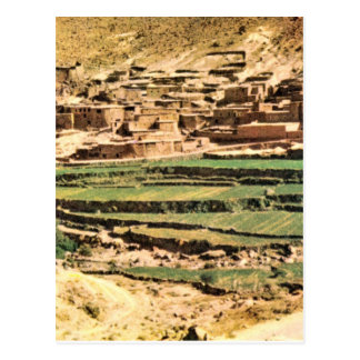 Replica  Vintage Terraces of Maize, Berber village Postcard