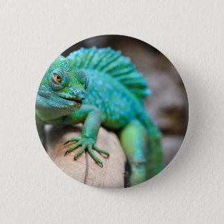 reptile 2 inch round button