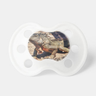 Reptile Baby Pacifiers