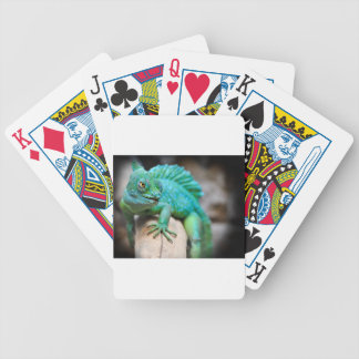 reptile poker deck