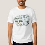 Reptiles, Serpents and Lizards T Shirt
