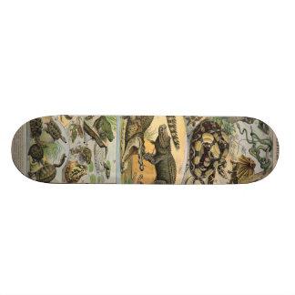 Reptiles Skateboard