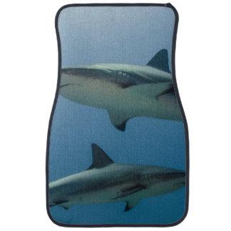 Requin des Caraïbes de récif Tapis De Sol