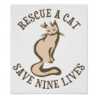 Rescue A Cat Save Nine Lives Poster