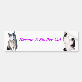 Rescue A Shelter Cat Bumper Sticker