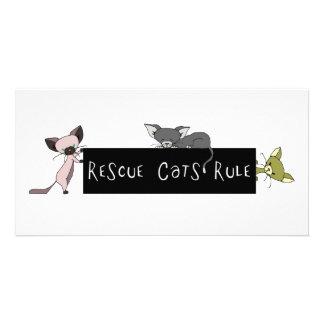 Rescue Cats Rule! Custom Photo Card
