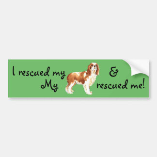 Rescue Cavalier Bumper Sticker