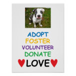 Rescue Dog Poster, Adopt Love Poster