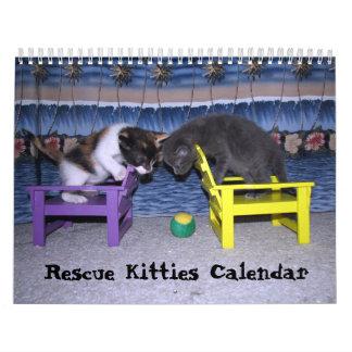 Rescue Kitties Calendar - Encore Edition (fr 2016)