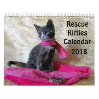 Rescue Kitty Calendar - New for 2018!