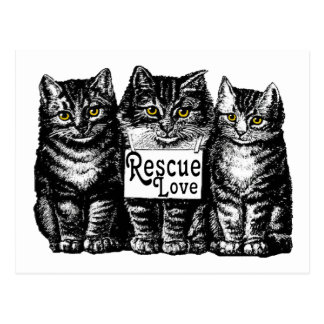 rescue love postcard