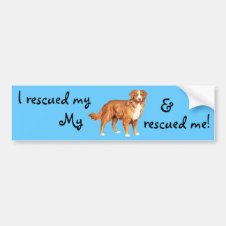 Rescue Toller Bumper Sticker