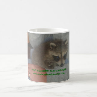 rescued baby raccoon mug