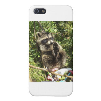 Rescued & Rehabilitated Raccoon Baby iPhone 5 Covers