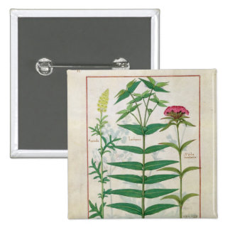Reseda, Euphorbia and Dianthus 2 Inch Square Button