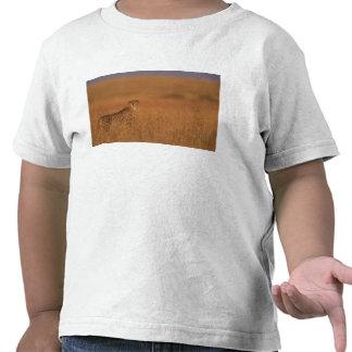 Réservation de jeu de l'Afrique, Kenya, Mara de T-shirt