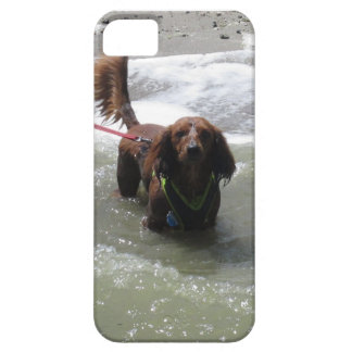 Reservoir Dachshund Playing iPhone5 Case