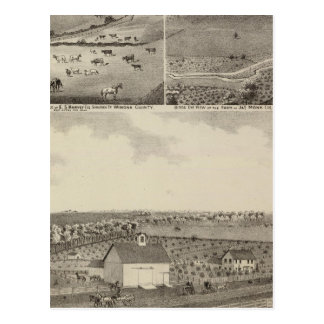 Residences and Farms of Eldridge, Minnesota Postcard