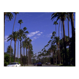 Residential Rodeo Drive, Beverly Hills, California Postcard