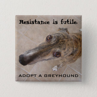 Resistance is futile. 2 inch square button