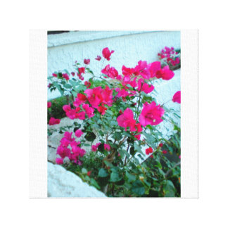 Resort Hot Pink Flowers Canvas Print