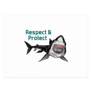 RESPECT AND PROTECT POSTCARD