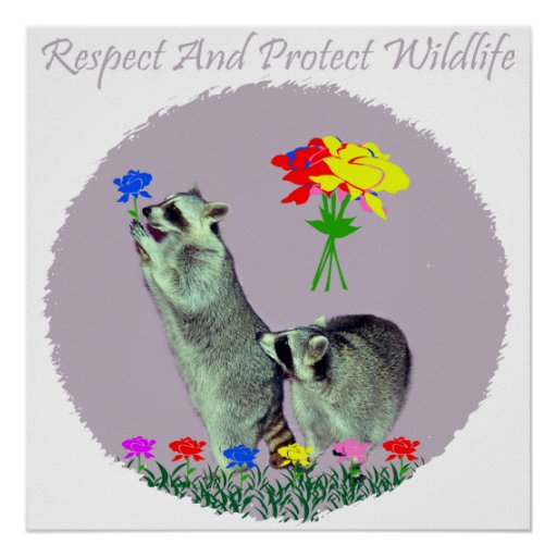 Respect And Protect Wildlife Posters