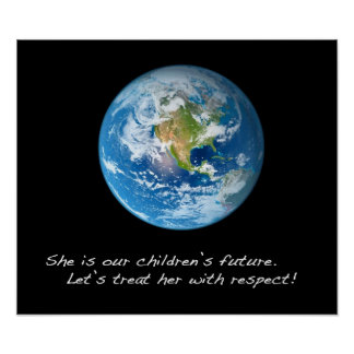 Respect the Earth Poster