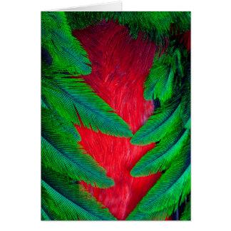 Resplendent Quetzal feather design Card