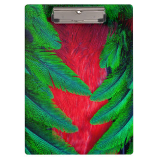 Resplendent Quetzal feather design Clipboard