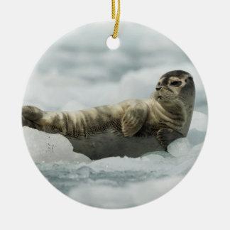 Resting Baby Seal Ceramic Ornament
