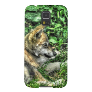 Resting Baby Wolf Pup Wildlife Photo Cases For Galaxy S5