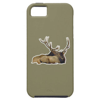 Resting bull elk case for the iPhone 5