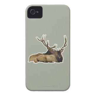 Resting bull elk Case-Mate iPhone 4 case