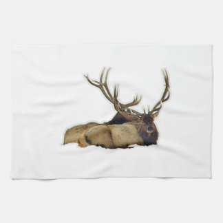 Resting bull elk kitchen towel