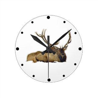 Resting bull elk round clock