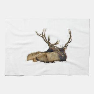 Resting bull elk towels
