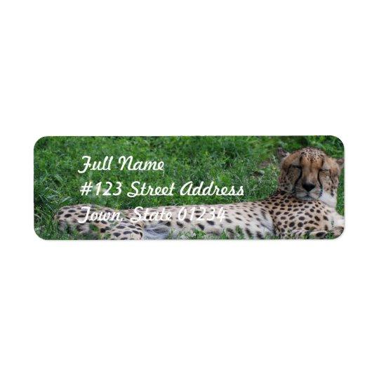 Resting Cheetah Mailing Label