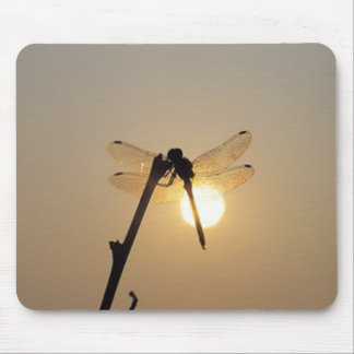 Resting Dragonfly at Sunset Mouse Pad
