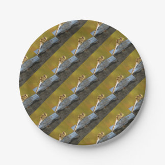 Resting Dragonfly Paper Plate