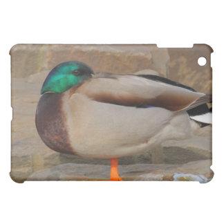 resting duck iPad mini cases