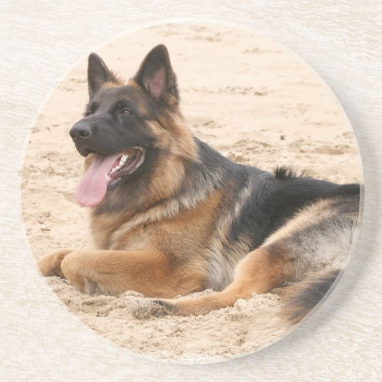 Resting German Shepherd Dog Coasters