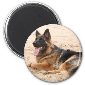 Resting German Shepherd Dog Magnet