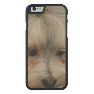Resting Havanese Dog Carved® Maple iPhone 6 Case