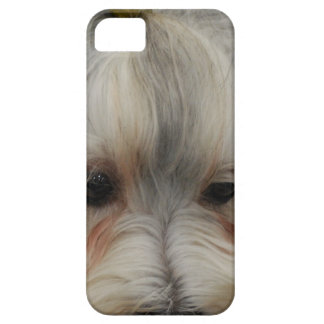 Resting Havanese Dog iPhone 5 Covers