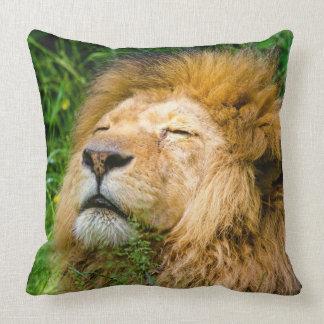Resting Lion Pillow