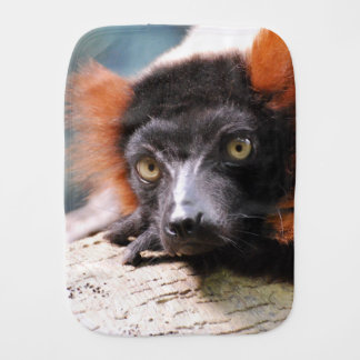 Resting Red Ruffed Lemur Baby Burp Cloths